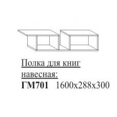 ГМ701 Полка для книг навесная 1600х288х300мм